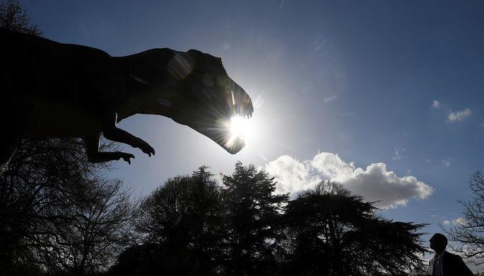 Раскрыта многолетняя тайна динозавров