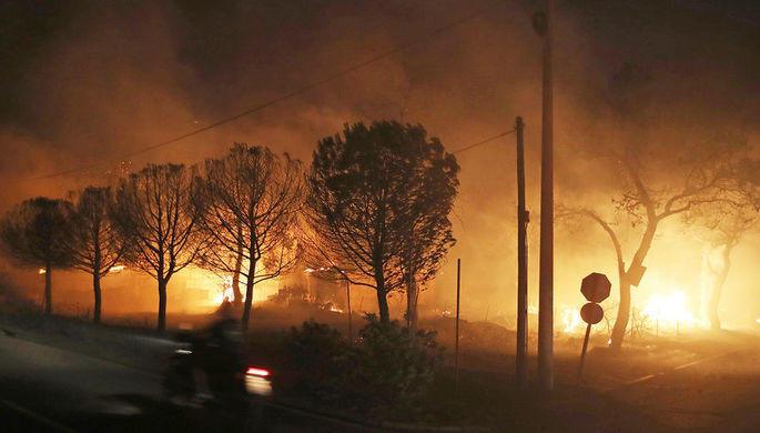 В зоне отчуждения в Чернобыле загорелся лес
