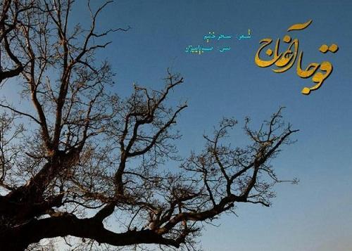 """Səhər Xanımın """"Qoca ağac""""ı radiomuzda - Video"""