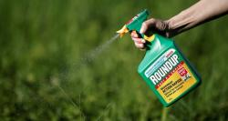 Monsanto pay $289M to cancer patient over weed killer
