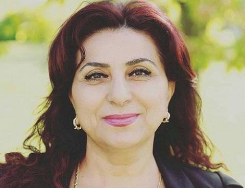 İsveçdə azərbaycanlı xanım deputat seçildi - Foto