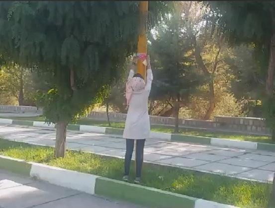 Azərbaycanlı qızın bu addımı alqışlandı - Foto