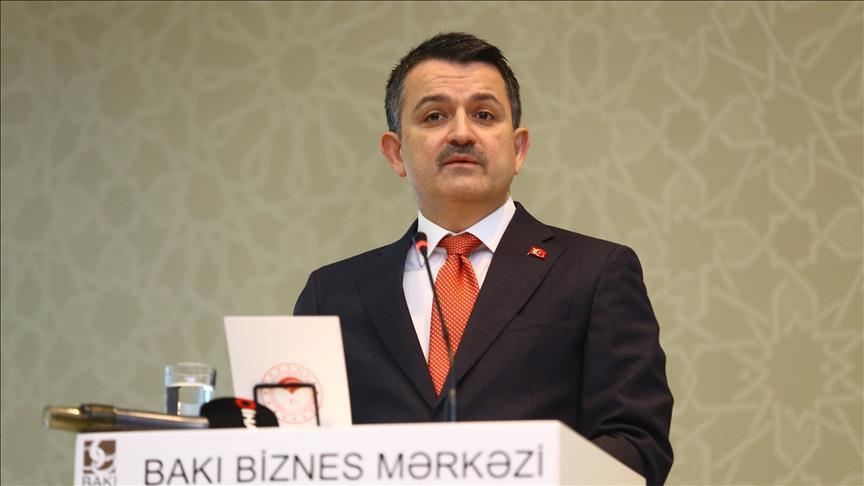 Анкара и Баку готовы к развитию регионального сотрудничества