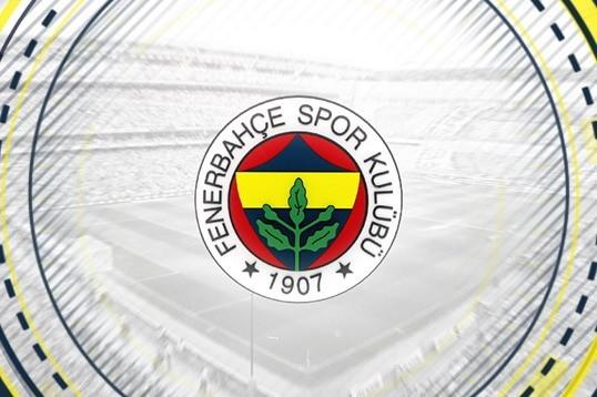 Turkish defender Erkin returns to Fenerbahce