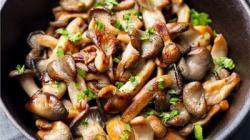 Mushrooms may 'reduce the risk of mild brain decline'