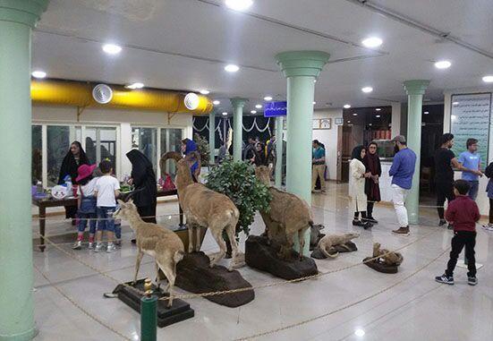 موزه تاریخی طبیعی اردبیل یکی از مجموعه های نادر گونه های جانوری در کشور