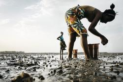 3 out of 10 East Africans undernourished