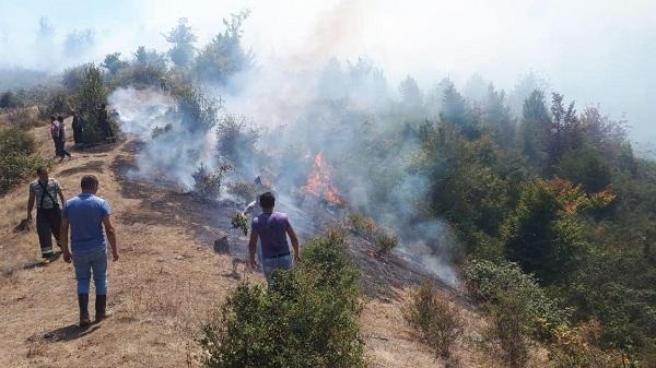 Hirkan Milli Parkı yanır: daha bir helikopter cəlb edildi - Foto