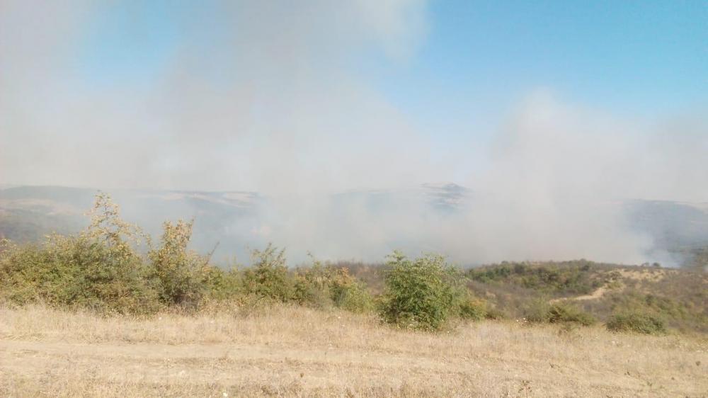 Ağsuda yanğın: Helikopterlər havaya qalxdı - Video