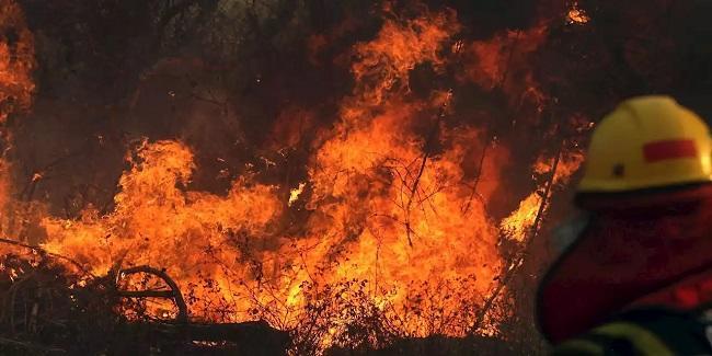 ABŞ-da dəhşət: 40 qayıq yandı, ölənlər var - Video