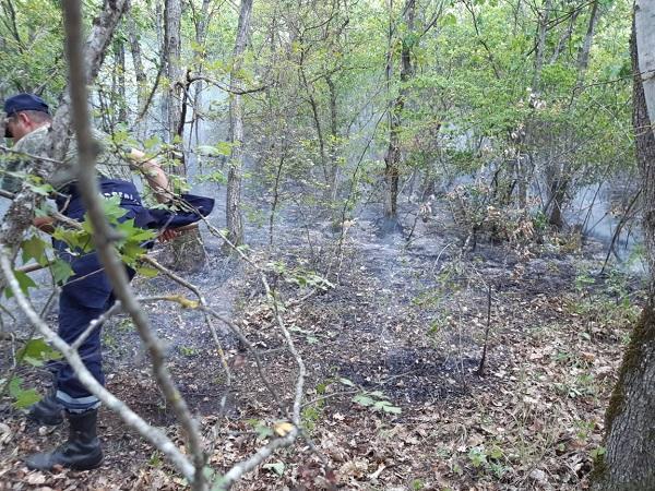 Пожар с территории Агсу перекинулся на Шамахы