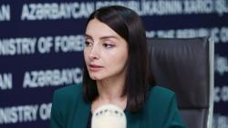 Лейла Абдуллаева обратилась к международным организациям