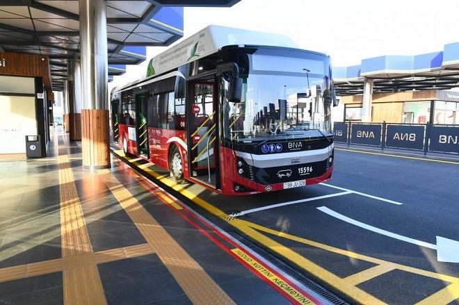 BNA запустило рекордное число линейных автобусов