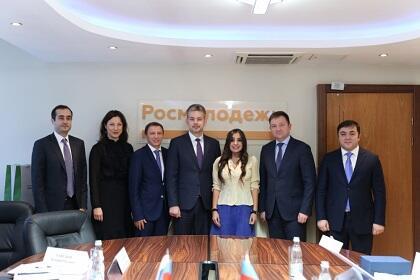 Лейла Алиева провела ряд двусторонних встреч в Москве