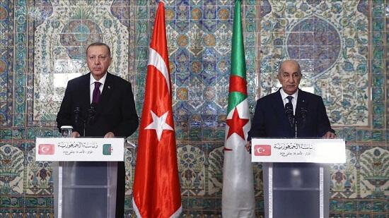 Turkey determined to stand by Libyans, says Erdogan
