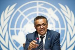 Pandemic peak yet to be reached, says WHO head