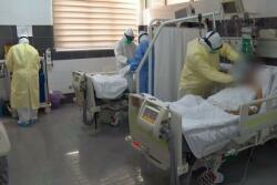 Oksigen aparatına qoşulanların ölüm faizi niyə çoxdur?