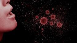 В Италии обнаружили два разных штамма коронавируса