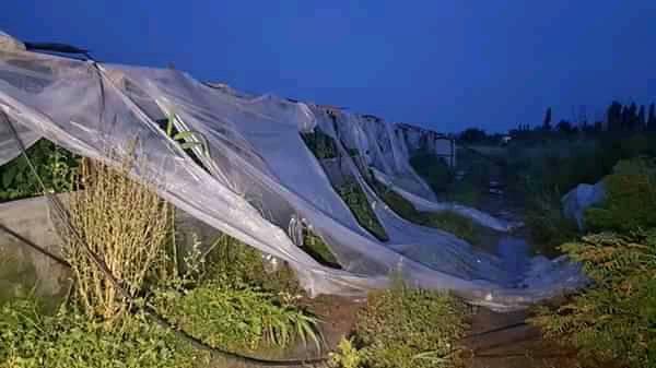 Göyçayda külək dam örtüyünü qopardı, hasar aşırdı - Foto
