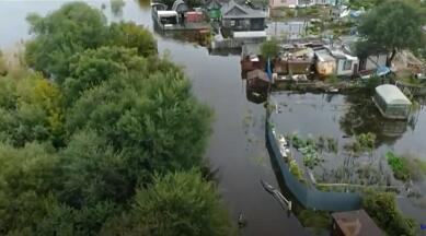 Amur daşdı: Balıqlar şəhərdə üzür – Video