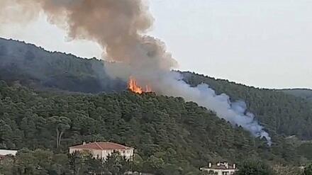 Türkiyənin kurort zonasında meşə yanğını