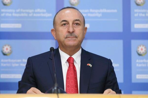 Turkey set to support Croatia's post-quake revival: Turkish FM