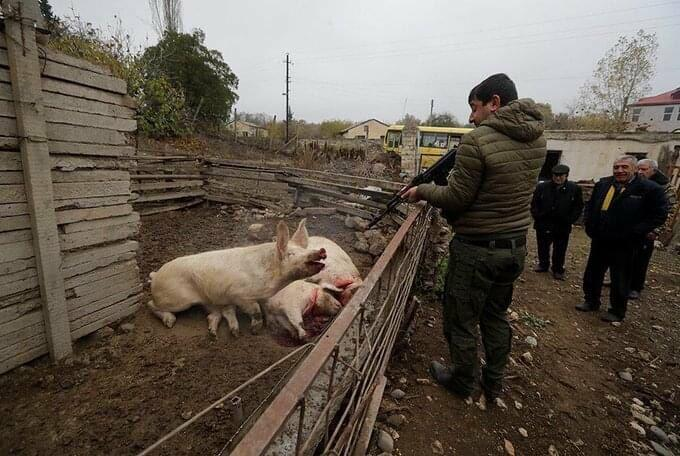 Armenians leaving Lachin kill domestic animals