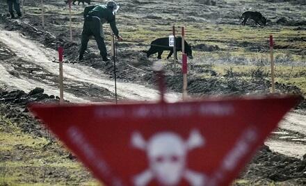 РИА Новости: Вместо дома-мины...