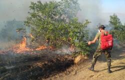 Число погибших от пожаров в Турции достигло 6