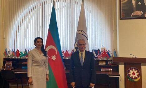 Aliyeva met with the UN representative -