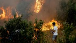 Infographic on wildfires in Turkey