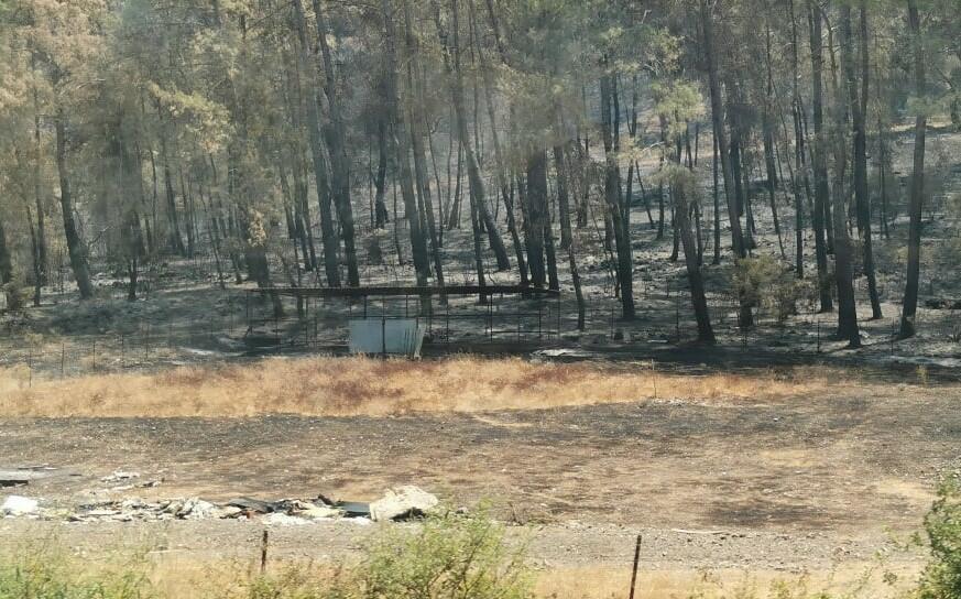 Fire extinguished on Denizli-Marmaris road -