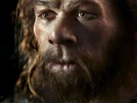 "Neandertalların ""ulu babaları"" kəşf edildi"